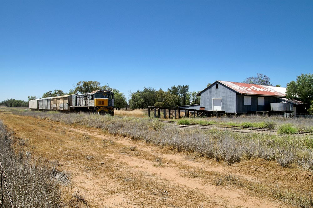 Noondale, with its disused woolshed, plays brief host, 6 November 2008